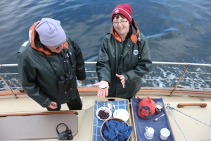 Devonshire tea served on board