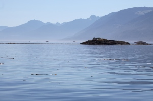 Looking through Weynton Passage down Johnstone Strait on the way home